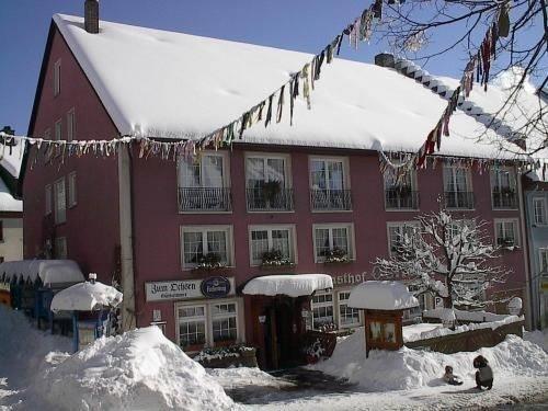 Landhotel zum Ochsen - фото 23