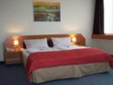 Hotel Servatius - фото 5