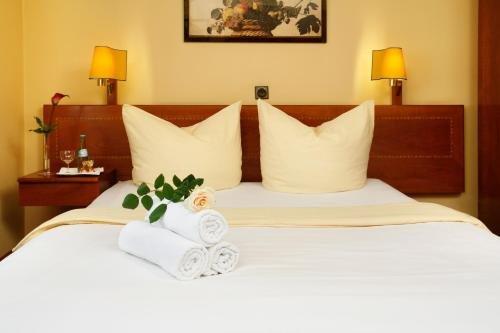 Hotel Regina -Garni Koln - фото 2