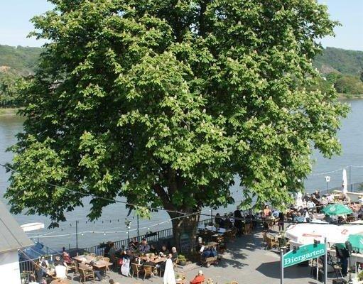 Hotel Restaurant Zur Kripp - фото 16