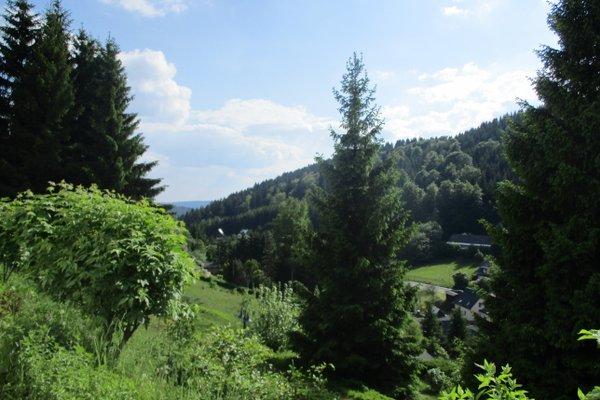Greizer Kammhutte Gaststatte & Pension - фото 16