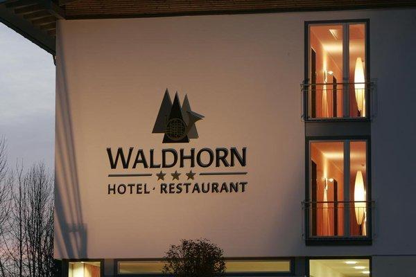 Hotel Waldhorn - фото 15
