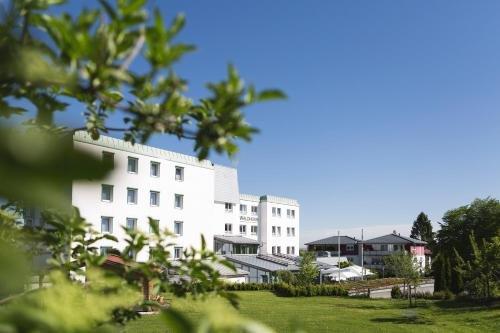 Hotel Waldhorn - фото 22