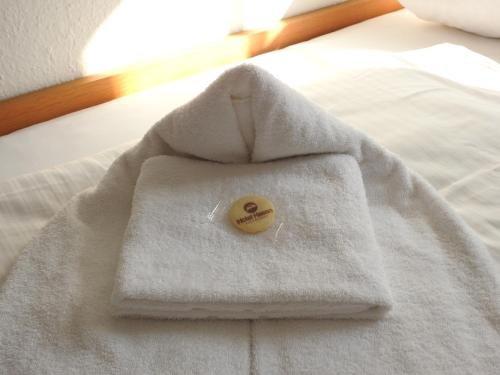 Hotel Hasen Kaufbeuren - фото 33