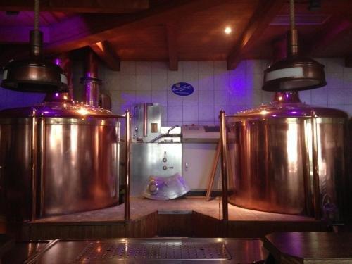 Brauereigasthof Stanglbrau - фото 14