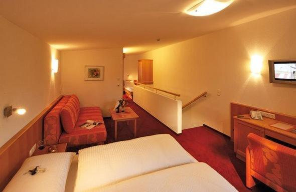 Hotel Alpenstern - фото 3