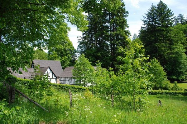 Wildenburger Hof - фото 18