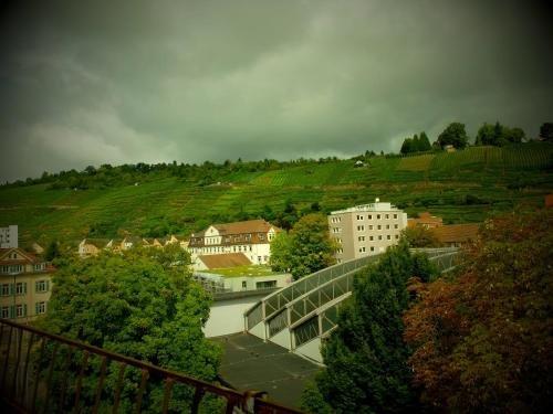 Hotel am Schelztor - фото 19