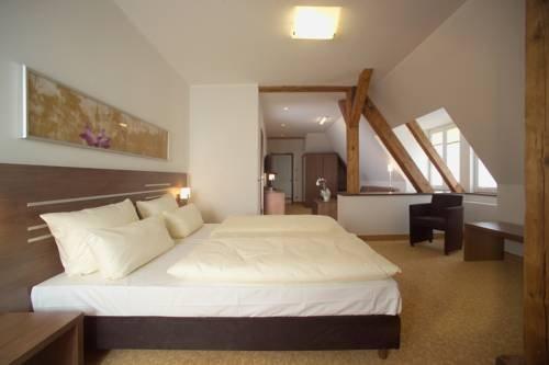 Hotel Bruhlerhohe - фото 12