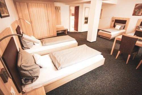 Hotel Am Vogelsanger Weg - фото 2