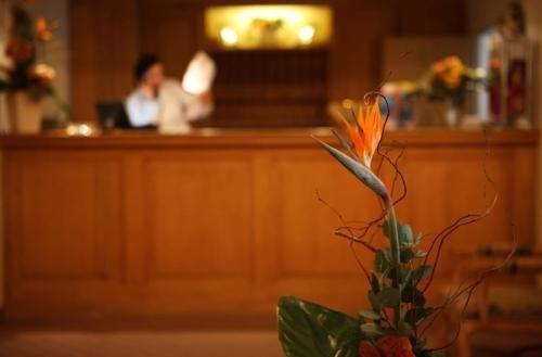 Hotel Lessing - фото 16