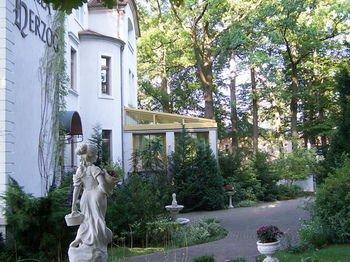 Hotel Villa Herzog - фото 18