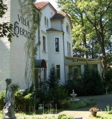 Hotel Villa Herzog - фото 23