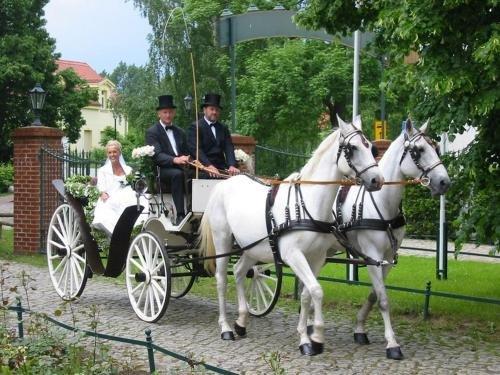 Schloss Diedersdorf - фото 17