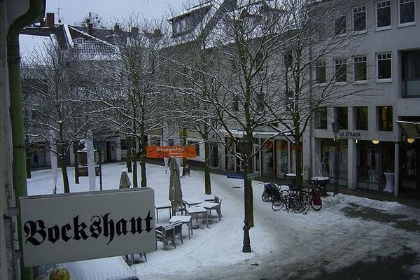 Bockshaut - фото 19