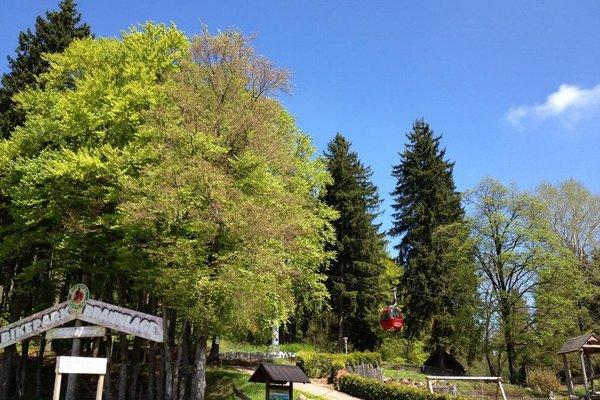 Hostel Braunlage - фото 21