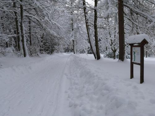 Pension - Der Berghof - фото 17
