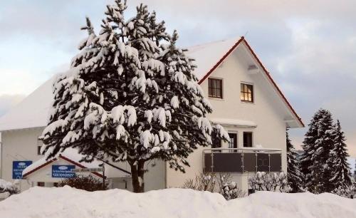Gesund Wohnen Ferienwohnung/Apartments - фото 5