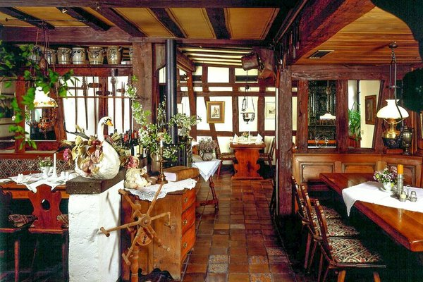 Landgasthof Zum Weissen Schwanen - фото 10