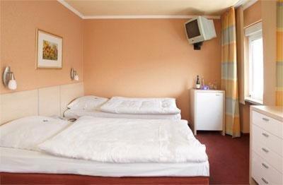 Rheinland Hotel - фото 3