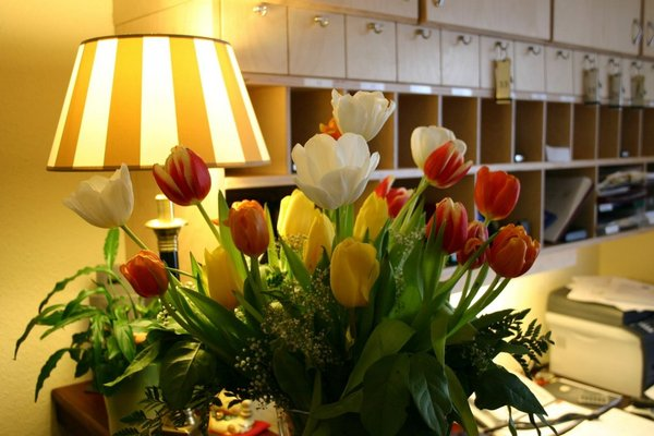 Hotel Lohndorf - фото 16