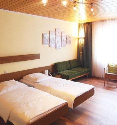 Hotel Am Romerhof - фото 9