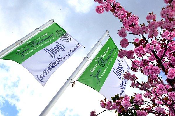 Hotel & Restaurant Zum Reussenstein - фото 13