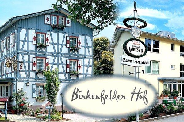 Hotel Landgasthof Birkenfelder Hof - фото 18