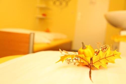 Hotel-Pension Insor - фото 8