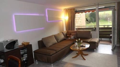 Apartmenthaus Schwarzwaldgrund - фото 9