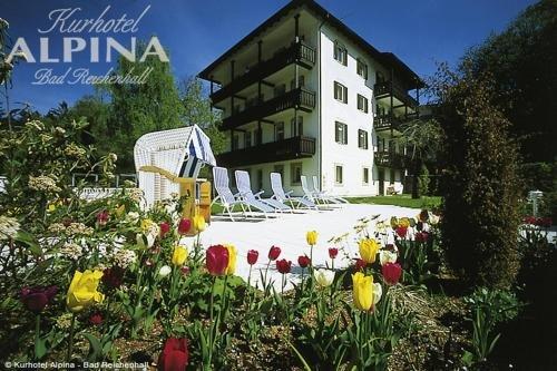 Hotel Alpina - фото 20