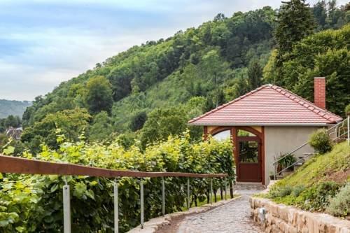 Flair Hotel Villa Ilske - фото 21