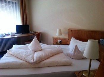 Hotel Altenberg - фото 2