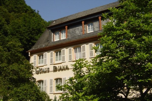 Hotel Diana Garni - фото 17
