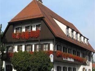 Hotel-Gasthof Wadenspanner - фото 18