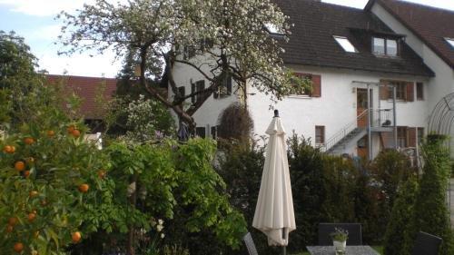 Hotel Villa Rosa - фото 23