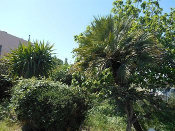 Villa Hibiscus - фото 18
