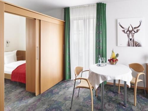 Hirsch Hotel - фото 1