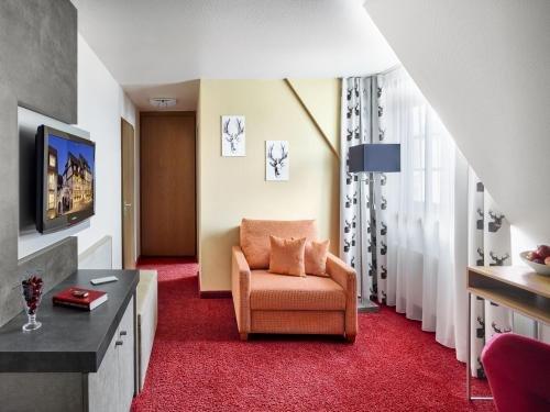 Hirsch Hotel - фото 6