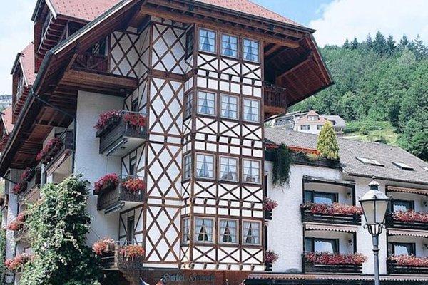 Hotel Hirsch - фото 16