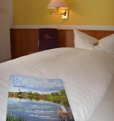 Hotel & Restaurant Engel - фото 2