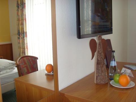 Hotel & Restaurant Engel - фото 9