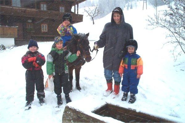 Bauernhof Gasteighof - фото 13