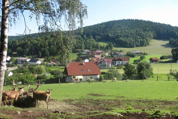Bauernhof Roadlhof - фото 23