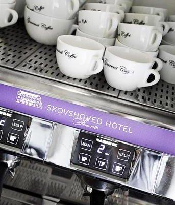 Skovshoved Hotel - фото 15
