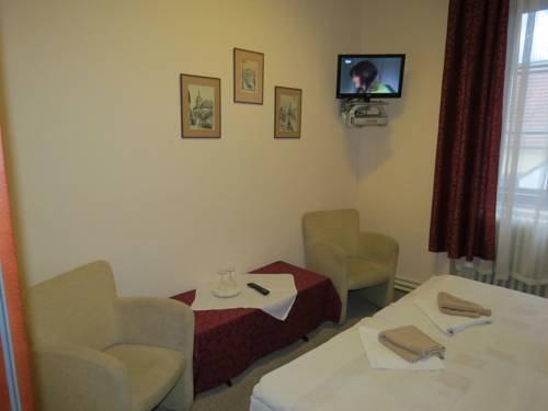 Hotel Cesky Dvur - фото 1
