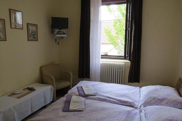 Hotel Cesky Dvur - фото 4