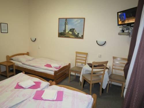Hotel Cesky Dvur - фото 7