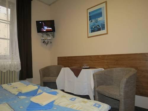 Hotel Cesky Dvur - фото 9