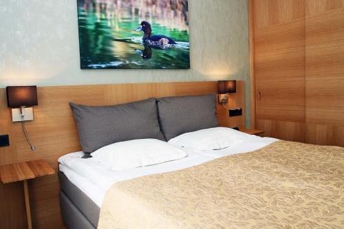 Spa Hotel Laine - фото 4